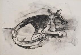Karl Hofer, Kohlezeichnung, liegender Schäferhund